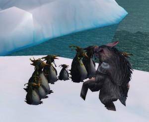 bearguin2